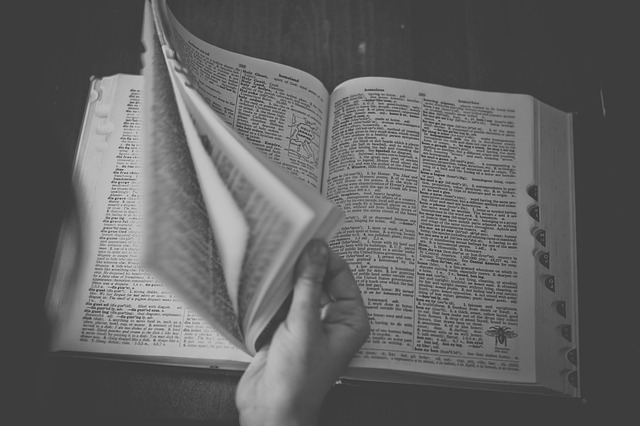 Dictionary, words (Pixabay)
