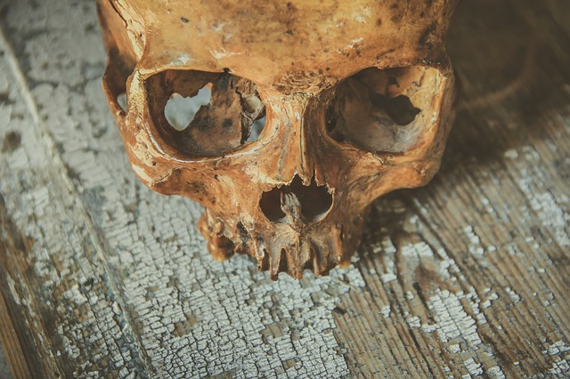 Corpse (Pixabay)