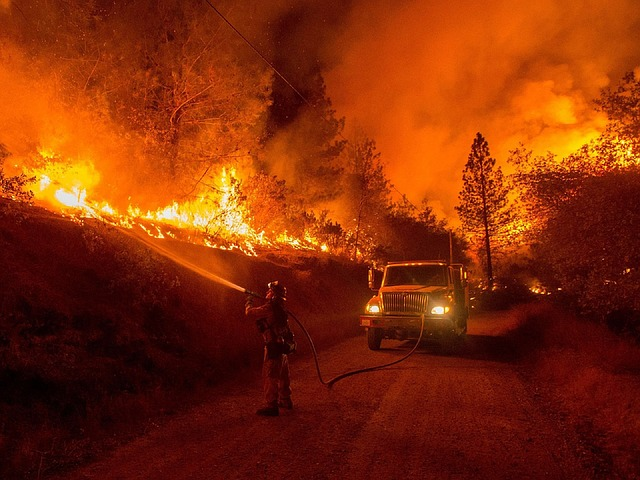 Wildfires scorch homes of the rich and famous in LA