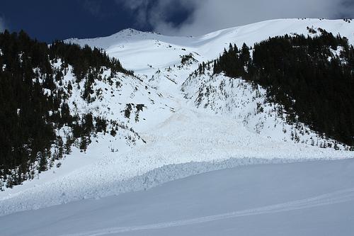Avalanche kills Swedish skier in Kashmir – Indian police
