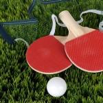 e831b30728f1003ecd0b470de7444e90fe76e7d71ab2194493f1c7_640_table-tennis