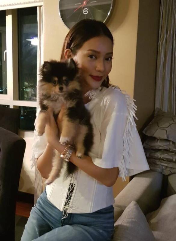 Paw-some! Araneta Center is now pet-friendly