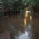 35794194742_d075b6b7d7_rain