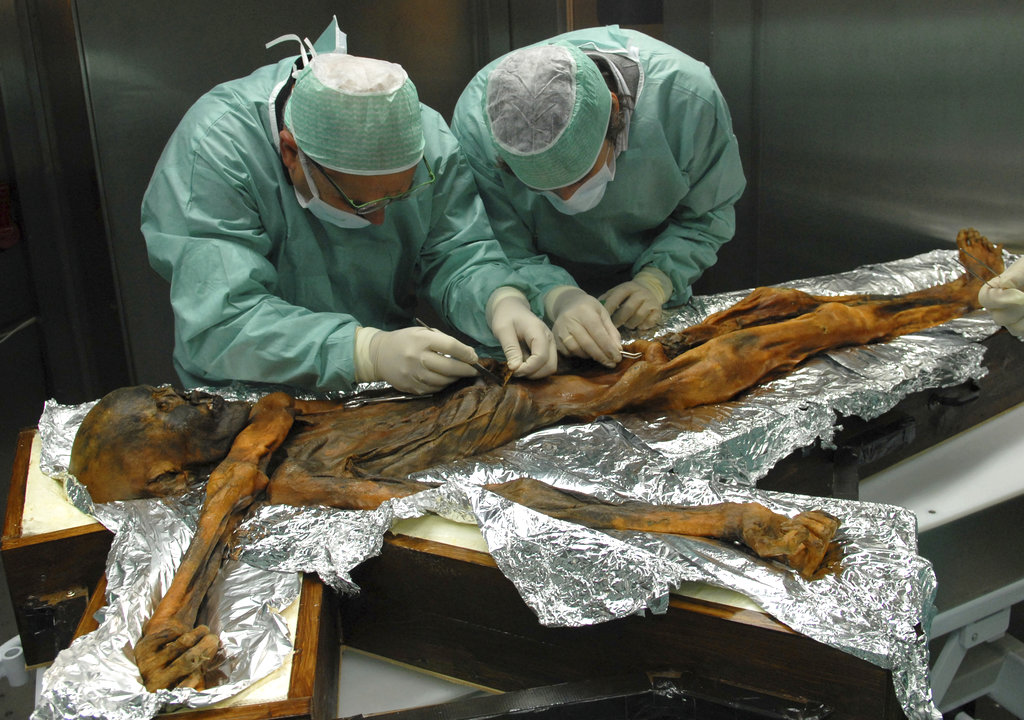 Last Meal of Ancient Hunter Uncovered