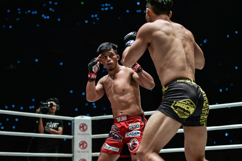 Honorio Banario VS Dae Sung Park (ONE Championship photo)