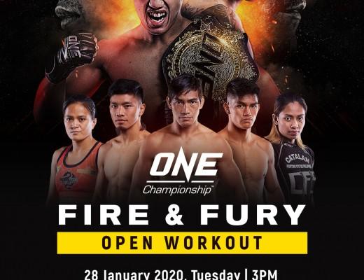 ONE: FIRE & FURY