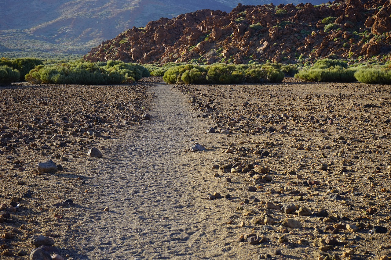 Signs of life at 'no-man's land' around Taal volcano