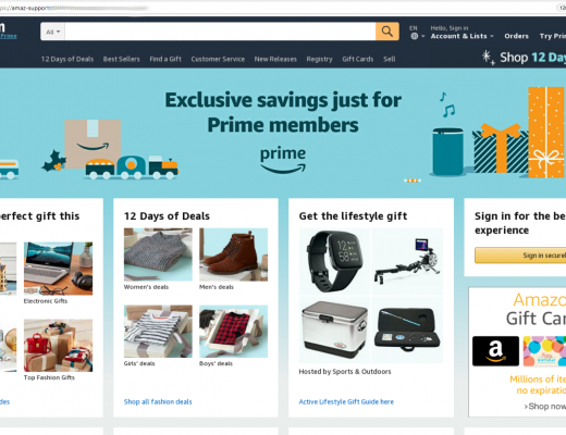 An example of the Amazon phishing page