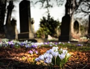 graveyard, cemetery, coronavirus [pixabay photo]