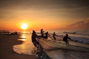 fishermen, fish, seafood [pixabay photo]