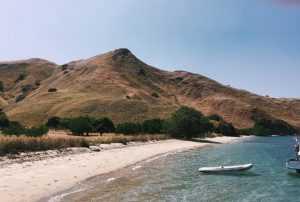 seashore, Indonesia [Photo by Marcella Oscar on Unsplash]