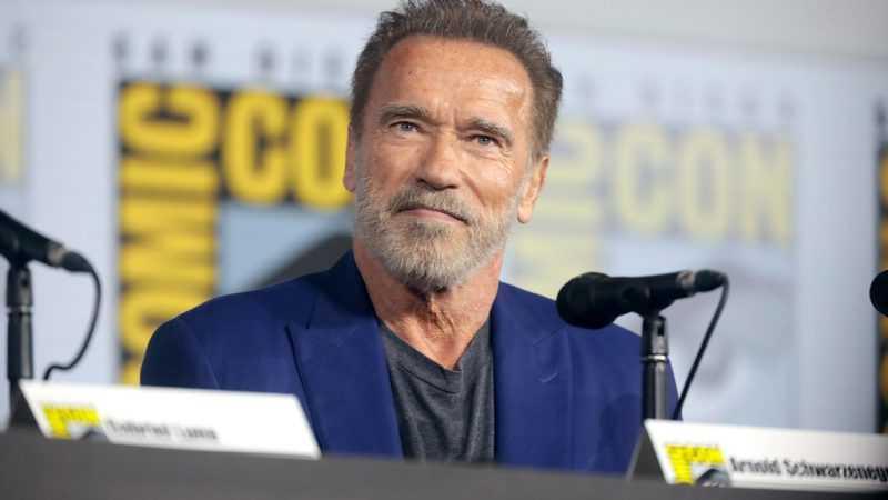 Arnold Schwarzenegger to star in spy drama series on Netflix